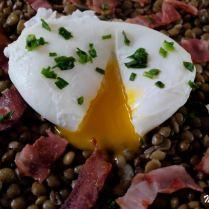 Salade de lentilles au vin blanc et œuf poché
