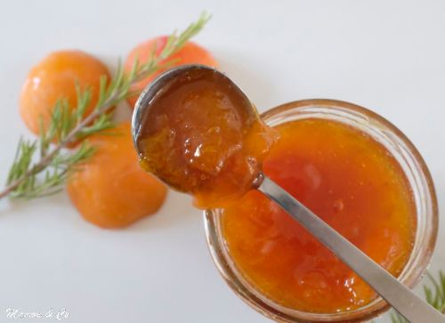 confiture abricots au romarin_5